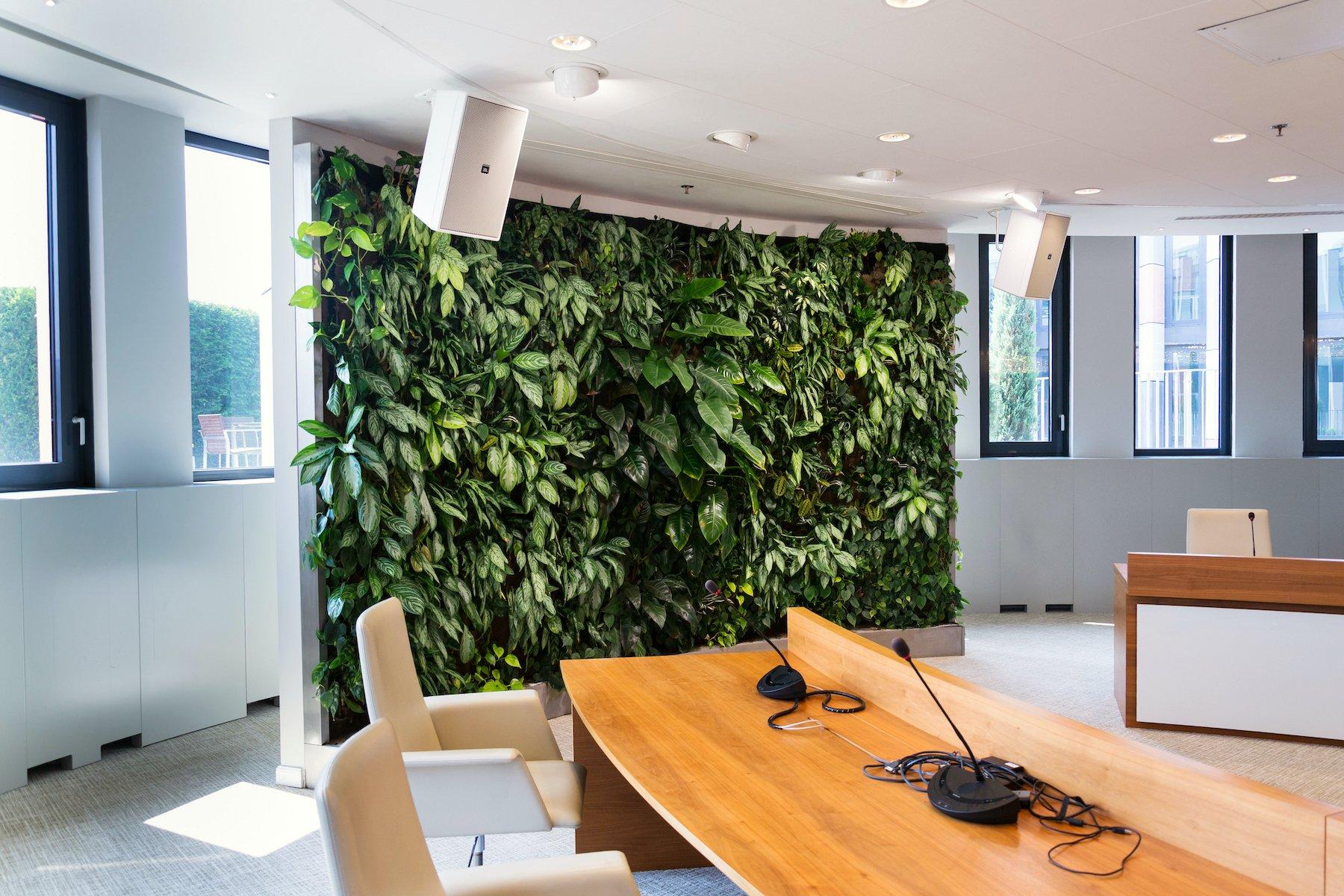 interior plantscape green living wall meeting room