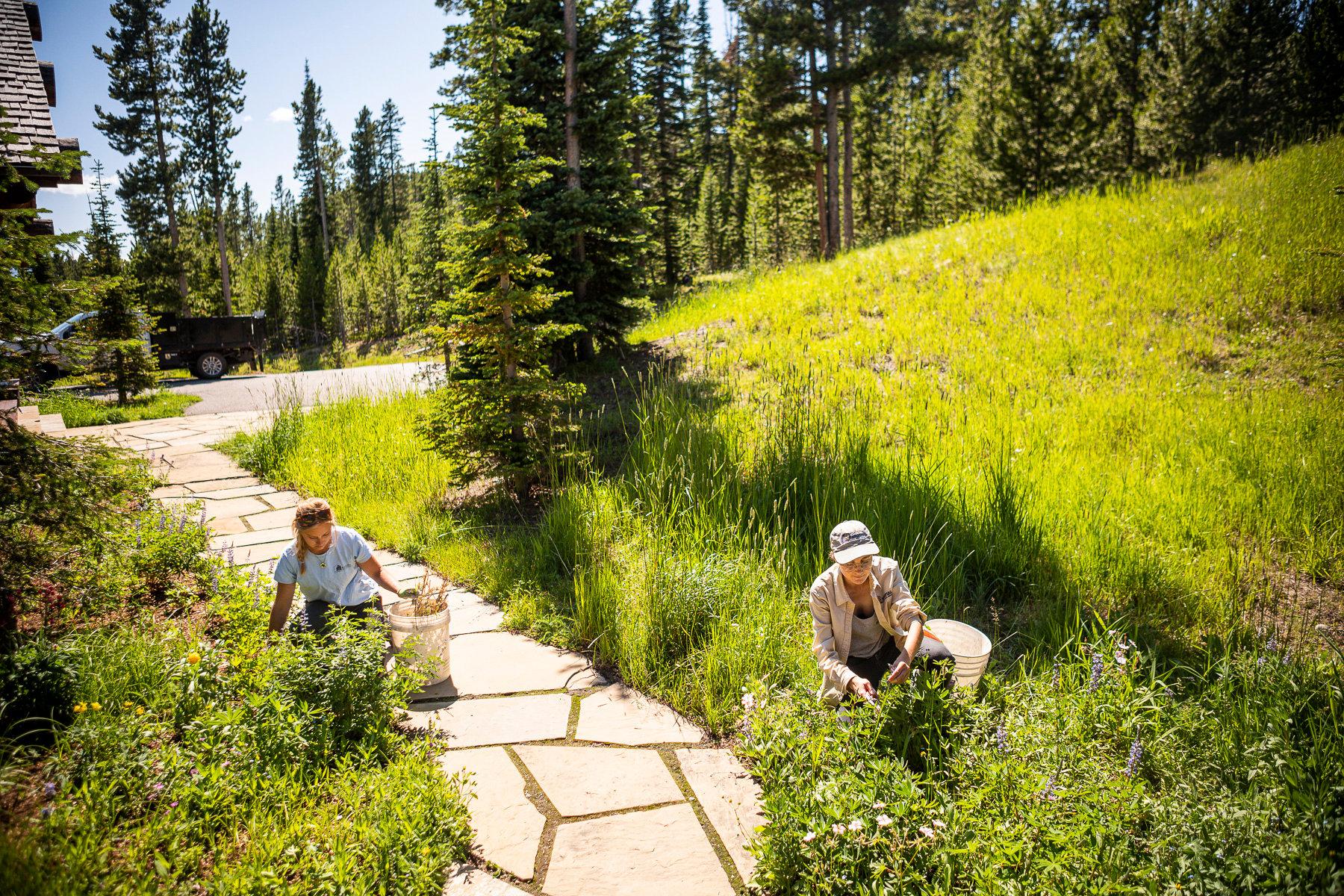 landscapers working in Bozeman, MT