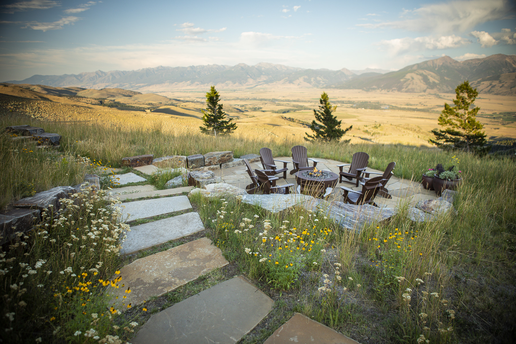 Native grass and wildflower planting for a sustainable landscape